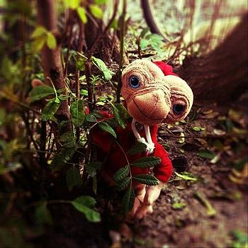 Close Encounter... #et #phonehome by S Michelle Reese