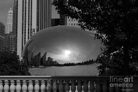 Tannis  Baldwin - Cloud Gate BW