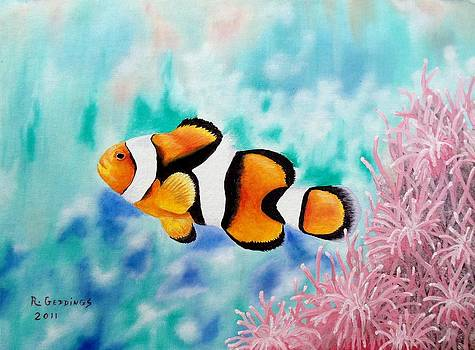 Clown Anemonefish by Riley Geddings