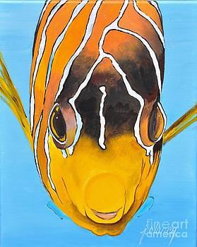 Clownfish head-on by Jolaine Goldman