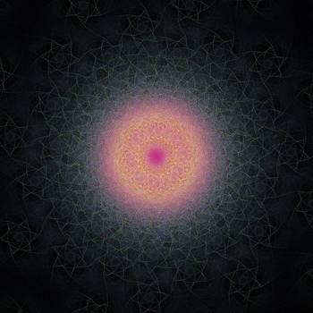 Cluster of Translucent Organisms by Joel Kahn