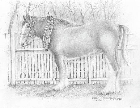 Jim Hubbard - Clydesdale Horse