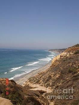 Coast line San Diego by Carol Wright