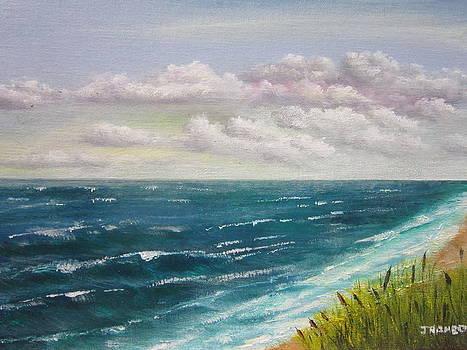 Coastal - Magenta Skyu  by Jim  Romeo
