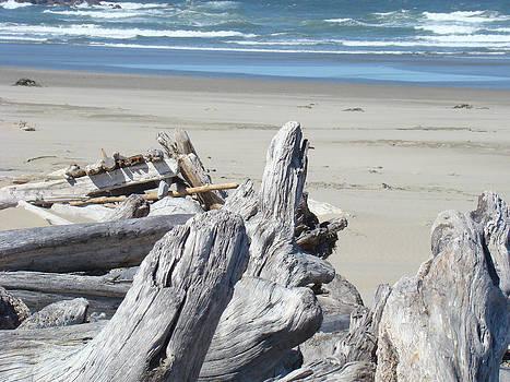 Baslee Troutman - Coastal Driftwood art prints Blue Waves Ocean