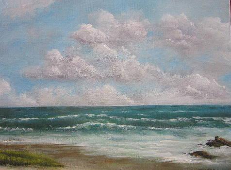 Coastal - Precocious Sky  by Jim  Romeo