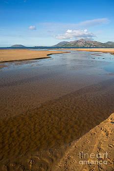 Coastal View Ireland by Andrew  Michael