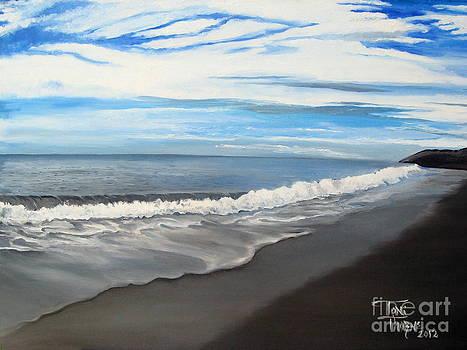 Coastal Waters by Toni  Thorne
