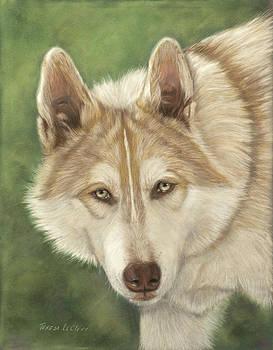 Cochise by Teresa LeClerc
