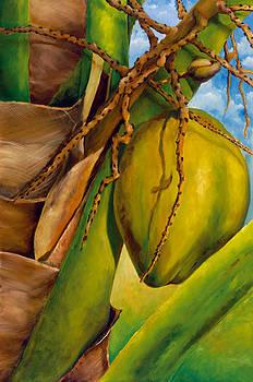 Coconuts serie 2 by Jose Romero