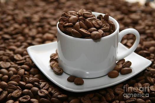 Stephen Mitchell - Coffee to Go