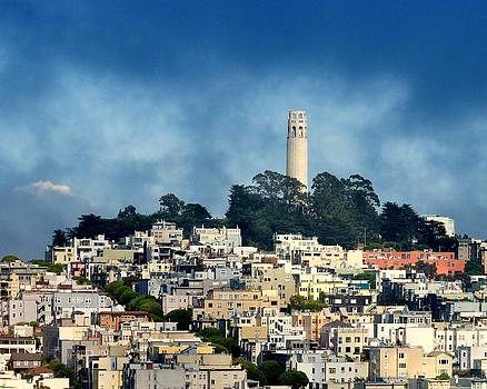 Coit Tower San Francisco by Pamela Rose Hawken
