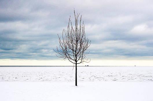 Milena Ilieva - Cold Winter