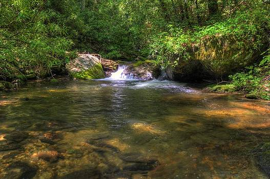 Coleman Creek by Quentin Griffin