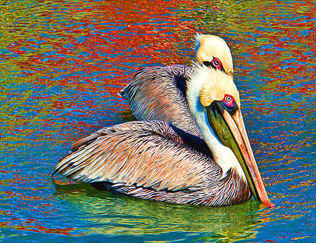 Carmen Del Valle - Color My Pelicans