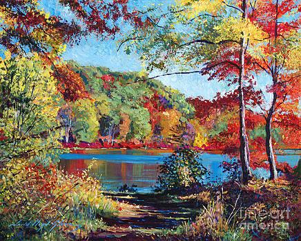 David Lloyd Glover - Color Rich Harriman Park