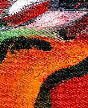 Color Study 4 by JG Boccella