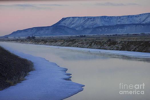 Colorado Mountain View by Christine Gutierrez