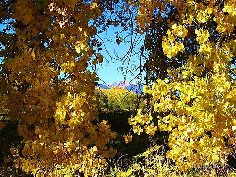 Colorado Springs Autumn by Donna Parlow