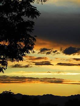 Colorado Sunset  by Vicky Mowrer