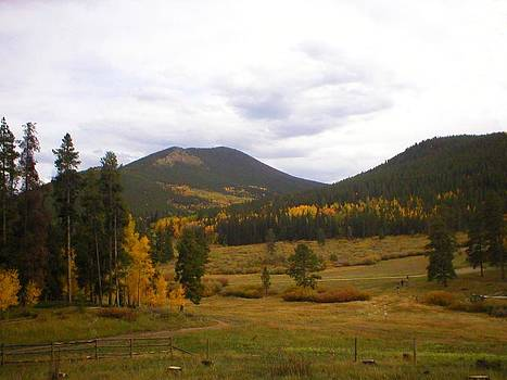 Colorado Trails in Autumn by Deb Martin-Webster