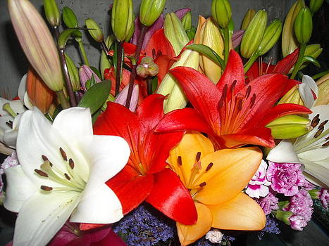 Colorful Bouquet of Lilies - Lilium by Liliana Ducoure