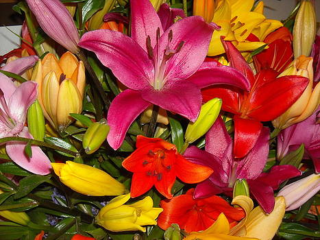 Colorful Bouquet of Lilies by Liliana Ducoure