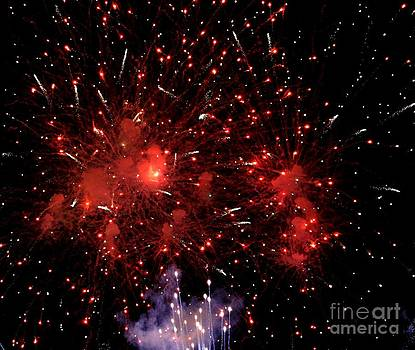 Colorful Fireworks by Theresa Willingham