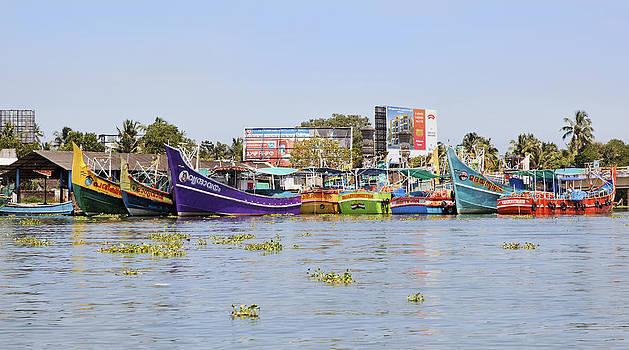 Kantilal Patel - Colorful Fishing