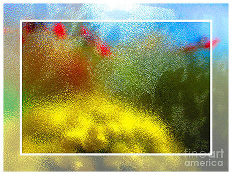 Colorful Impressions by Shannon Hill