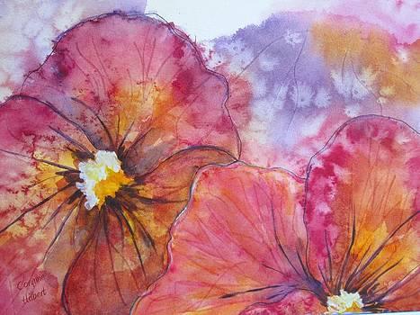 Colorful Pansies by Corynne Hilbert