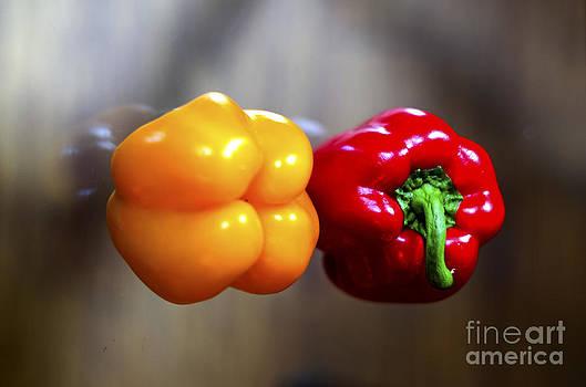 Pravine Chester - Colors in a Pepper
