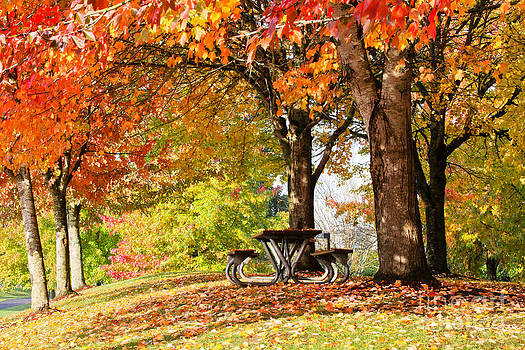 Colors of Fall by Bdsmalley