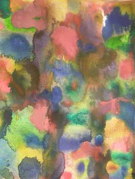 Colourful Blossoms by Priya Arun
