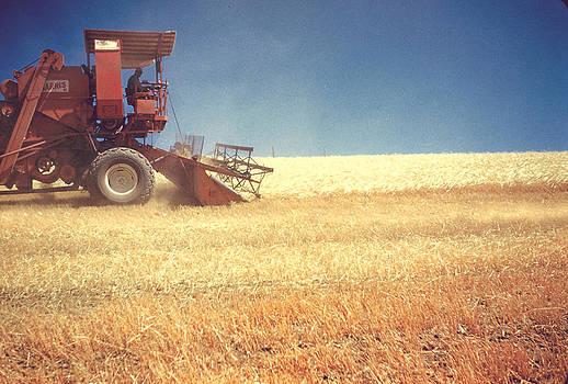 Dennis Jones - Combine Harvest 1961