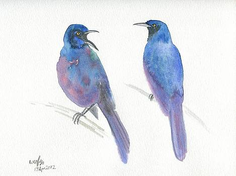 Common Grackles by Wenfei Tong