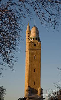 Tim Mulina - Compton Hill Water Tower
