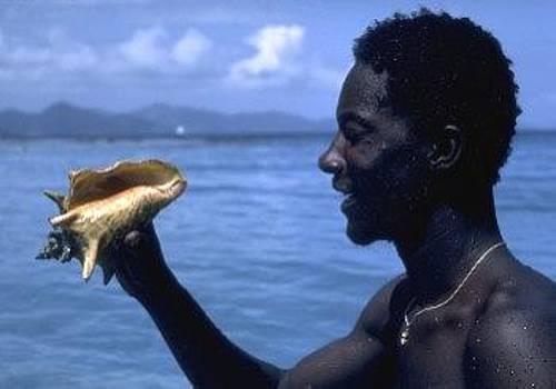 Don Kreuter - Conch Diver