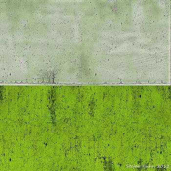 Concrete Landscape 1 by Steve K