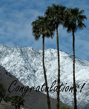 Congratulations by Monica Lahr