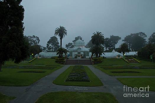 Tim Mulina - Conservatory in Fog