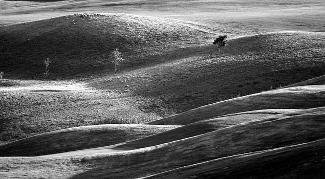 Contours by Geoff Smith