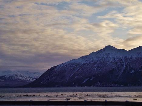 Cook Inlet by Megan Sharkey