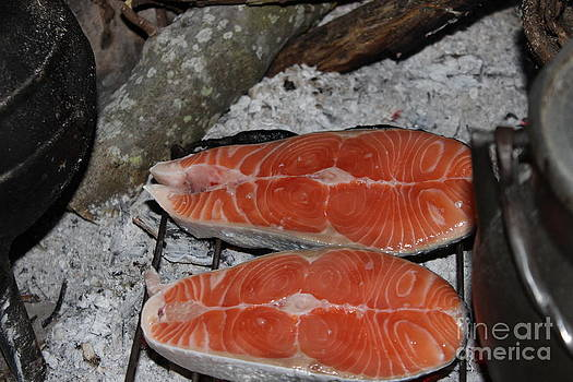 Cooking salmon in the countryside by Alexandra Bento