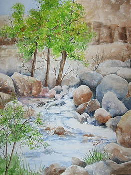 Cooling Stream II by Marilyn  Clement