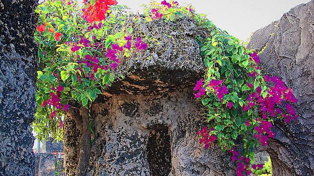 Coral Castle by Dulce Levitz