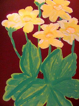 Coreopsis by Amy Bradley
