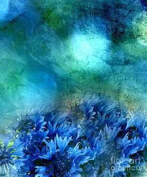 Cornflower by Anne Seltmann