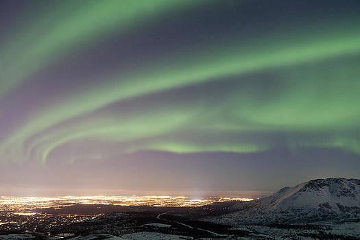 Tim Grams - Cosmic City Lights
