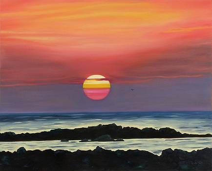 Costa Rican Sunset I by Pamela Bell